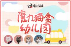 魔力猫盒:本年度最IN大法 用谈恋爱的方式来养猫